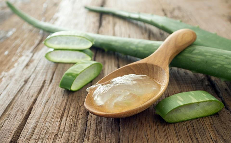 Les bienfaits de l'Aloe vera  pour la santé et la beauté